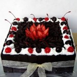 SEMPRIT KUE stainless